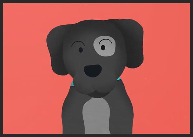 Dog Kind Animation